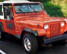 Jeep Wrangler I YJ 1987 - 95 Windschutzscheibe grün Blau OHNE Rahmen-Set 3-tlg