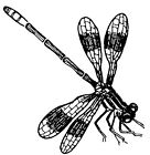 Unmounted Rubber Stamps, Dragonflies, Insects, Nature Stamps, Landing Dragonfly
