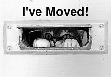MOVING ANNOUNCEMENTS -Set of 10- Change of address postcards 586CAS I've Moved!