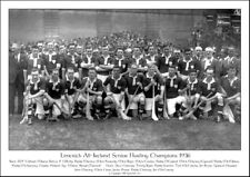 Limerick All-Ireland Senior Hurling Champions 1936: GAA Print