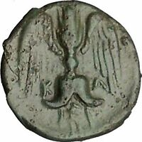 KATANE in SICILY 415BC river-god Amenanos Thunderbolt Ancient Greek Coin i51540