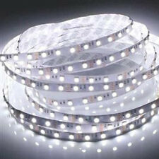 12V 5M 3528 SMD 300 Leds LED Strips Strip Light Waterproof Cool White +Connector