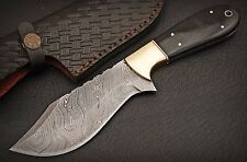 Damascus Steel Blade, Survival,Camping,Sporting Knife BUFFALO HORN HANDLE