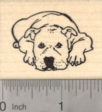 American Pitbull Terrier Dog Rubber Stamp, Staffordshire E21926 Wm