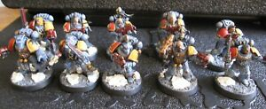 40K Space Wolves Grey Hunters Squad well painted.