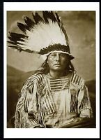 ⫸ 912 Postcard Gall, Hunkpapa Sioux Chief - 1882 Photo by George Scott – NEW