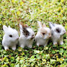 4 Mini Realistic Rabbits Handmade Home Decor Furry Easter Bunny Fur Animal Set