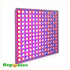 2x LUSHPRO HYDROPONICS LED GROW LIGHT PANEL RED/BLUE 25W 169 BULBS FULL SPECTRUM
