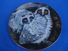Danbury Mint Long-eared Baby Owls Collectible Plate #B780 by Dick Twinney & Coa