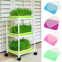 Planting Cultivation Plant Grow Trays Nursery Pots Sprout Plate Soil-Free