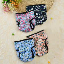 Menstrual Safety Pants For Dogs Male And Female Dogs Color Physiological Pants