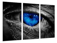 Cuadro Moderno Ojo Humano, Iris Azul, ref. 26484