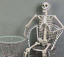 6 Feet Halloween Prop Life Size Human Skull Skeleton Haunted House Decorations