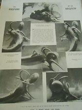La Pieuvre et le Requin duel à mort sous les eaux 1942