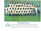 1967 BOSTON RED SOX 8X10 TEAM PHOTO CONIGLIARO LONBORG BASEBALL FENWAY