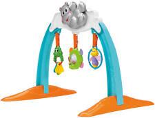 Chicco Baby Gym Hippo Nilpferd Spielcenter Fitnesscenter 3 M+