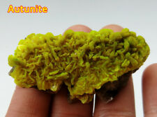 Autunite Green Mica Made in China Mineral Specimens Mineral Crystals Materials