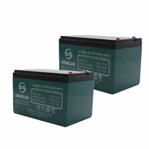 2PCS 12V/12AH/10HR 6-DZM-12 Rechargeable Battery fr ATV Quad Scooter Go kart 24V