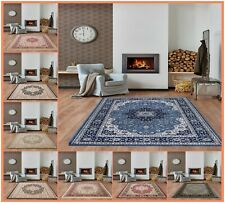 Large Rugs Traditional Hallway Rug Runner Bedroom Living Room Center Carpet