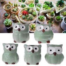 5Pcs Cute Owl Plant Flower Pots Ceramic Succulent Planter Miniature Office Decor