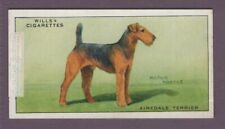 Airedale Terrier Dog Canine Pet 1930s Ad Trade Card