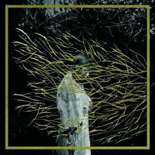 Forest Swords - Engravings [New CD]