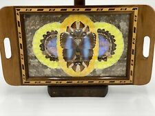 Vintage Antique Art-deco Iridescent Morpho Butterfly Wing Serving Tray