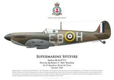 Print Spitfire Mk IIa, Sgt Robert Beards, No 41 Squadron RAF, 1940 (by G. Marie)