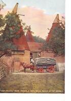 uk40215 hop picking oast houses  uk maidstone kent agriculture harvest
