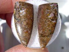 """New listing 3.09 grams 24x10x3mm set of 2 Gem Dinosaur Bone Fossil """"Gembone"""" cab cabochon"""