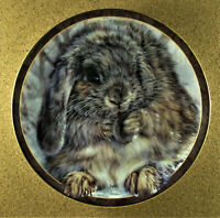 QUITE AN EARFUL Plate Bunny Tales Vivi Crandall #9 Rabbit Bradford Exchange