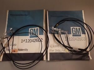 NOS 1979 1980 1981 Eldorado Monitor Lens & Fiber Optic Wires GM Accessory NEW