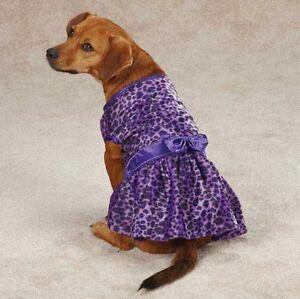 Vibrant Leopard Dog Dress Dog Pet Party East Side Collection Animal Print