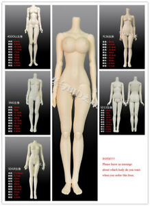 1/3 BJD SD Resin Doll Body Only Female Unpainted Doll Body 6 Types Available NEW