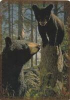 Modern-Wide-Linen-Bears-P1-Mother Watching Cub-Swap Playing Card