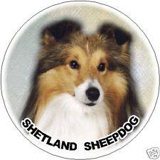 2 Shetland Sheepdog/Sheltie Car Stickers 5 By Starprint