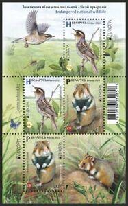 Belarus 2021 birds rodents endangered wildlife animals Europa cept s/s MNH