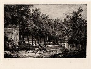 "Lovely JOHN CROME 1800s Etching ""Chapel-Fields Grazing Cattle"" SIGNED Framed COA"