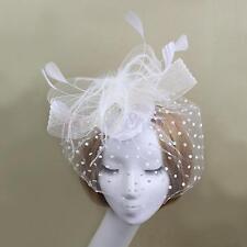 Wedding Bridal Bird Cage Face Veil Feather Fascinator Hair Clip Off-White