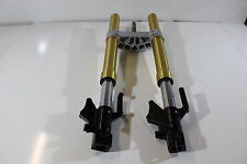 FORK ASSEMBLY, FRONT FOR GT250Rcc Hyosung Suspension Complete 51100HR8300HPA
