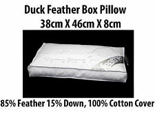 2X Luxury Duck Feather BOX Pillow 85%25 Feather 15%25 Down with 100%25 Cotton Cover