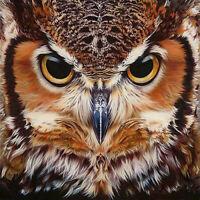 DIY 5D Diamond Cross Stitch Embroidery Rhinestone Painting Owl Craft Home Decor