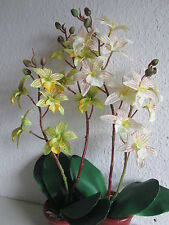 1 Orchidee Topfblume 50cm Seidenblume Künstliche Kunst Blume Pflanze Floristik