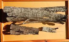 Baumrinde Deko In Bastelholzmaterialien Gunstig Kaufen Ebay