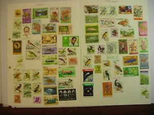MALAWI  COLLECTION  ON  ALBUM-PAGES  FINE USED/MINT