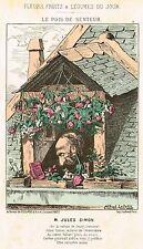 """Le Petit's Fleurs & Fruits  - """"LE POIS DE SENTEUR""""- Hand-Colored Litho - 1871"""