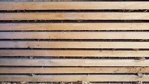 Bohlen Bretter Dielen Fichte Holz