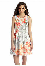 Vince Camuto Knit Fit and Flare Dress NWT 6
