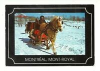 WINTER SLEIGH RIDE ON MOUNT ROYAL MONTREAL, QUEBEC, CANADA CHROME POSTCARD
