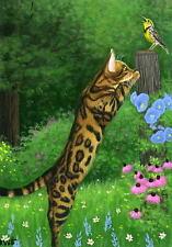 Bengal cat meadowlark bird summer garden limited edition aceo print art
